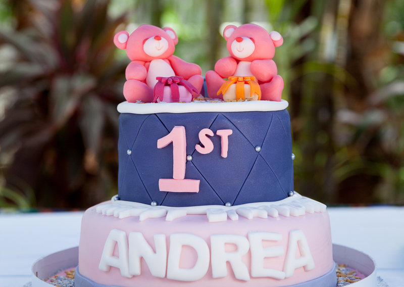 Andrea's 1st Birthday Party